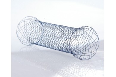 Duodenal Stents