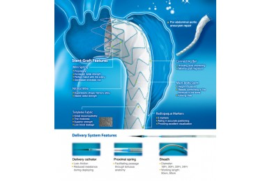 Thoracic Stent-Graft System